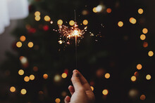 Happy New Year! Burning Sparkler In Female Hand On Background Of Christmas Tree With Lights