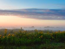 Sunrise Over The Field: Mornin...