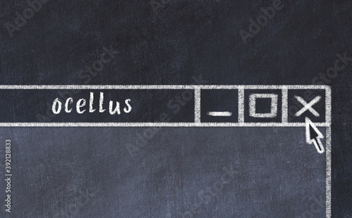 Fototapeta Chalk drawig of browser window with inscription ocellus