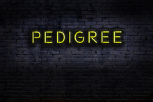 Neon Sign. Word Pedigree Against Brick Wall. Night View