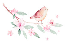 Spring Bird On Blooming Branch With Green Leaves And Flowers. Watercolor Wedding Invitation Card Blossom Painting. Hand Drawn Pink Wreath Design. Cherry Isolated Branch Decoration.
