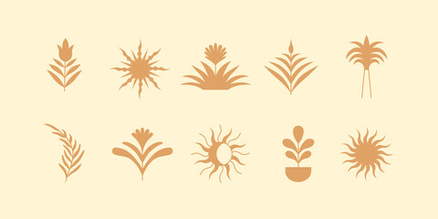 Vector design element in simple modern style - decorative vases with leaves and plants