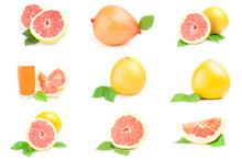 Set Of Citrus Fruit Isolated O...