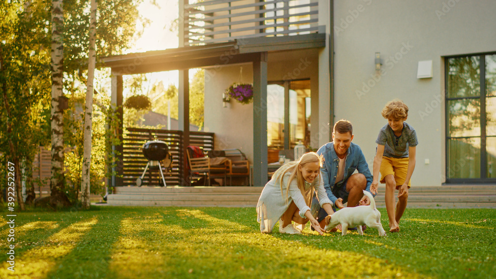 Fototapeta Smiling Father, Mother and Son Pet and Play with Smooth Fox Terrier Retriever Dog. Sun Shines on Idyllic Happy Family with Loyal Pedigree Dog have Fun at the Idyllic Suburban House Backyard