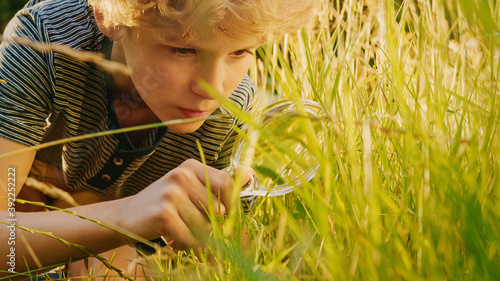 Handsome Young Naturalist Scientist Explores Plant Life and Insect Life with Magnifying Glass Billede på lærred
