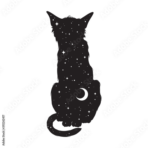 Photo Silhouette of cat with crescent moon and stars isolated