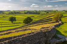 View Of Dry Stone Walls Near Litton, Peak District National Park, Derbyshire