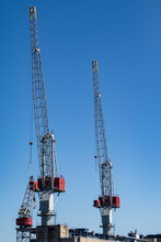 Cranes In Harbor