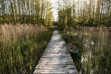Rustic Wooden Pier On Lake In Summer