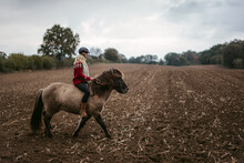 Young Woman Riding Horse In Ha...