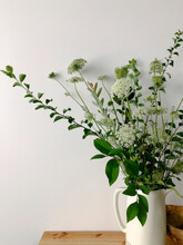 Queen Anne's Lace In Vase