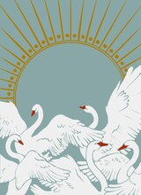 White Swans On The Background Of The Sun, From Which The Rays Diverge.