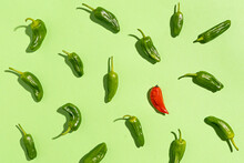Green And Red Pepper Pattern O...