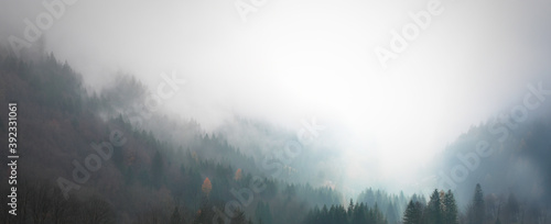 Fotografering Alpine forest with fog and warm colors, autumn in the mountains, ideal for wallp