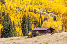 Ashcroft Colorado - Building In Historic Ashcroft Colorado Ghost Town With Golden Aspen Tree Covered Mountainside In Background