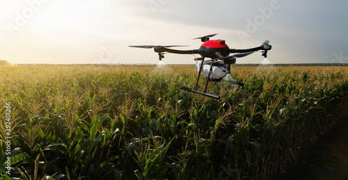 Fotografija Drone sprayer flies over the agricultural field