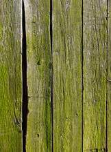 Old Wooden Fence Covered With Green Moss. Old Wooden Rustic Background.