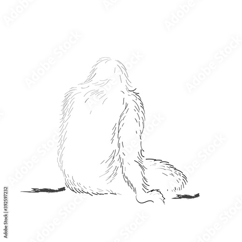 Papel de parede vector illustration monkey of the shaggy beast of man