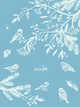 Hand Drawn Birds In Tree Branc...