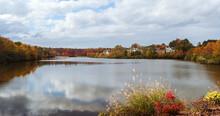 Foliage With Fall Season Color...