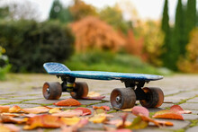 Close Up Of A Skateboard On The Street Covered With Colorful Autumn Leaves In The Park. Selective Focus.