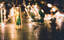 Christmas Still Life With Small Christmas Trees In Glass Jars And Glowing Holiday Lights