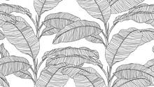 Botanical Seamless Pattern, Hand Drawn Line Art Banana Tree On White