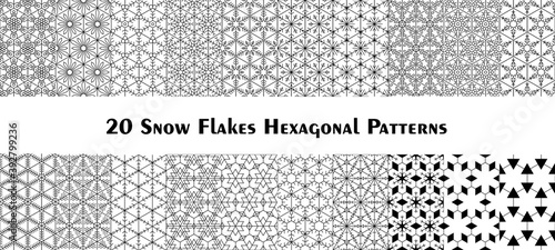 Obraz na płótnie Set of twenty hexagonal Snow Flake Patterns