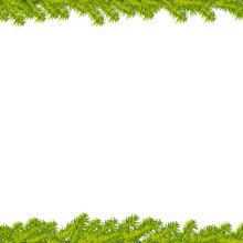 Beautiful Christmas Tree Branches With Thorns Frame. Realistic Vector Background II.
