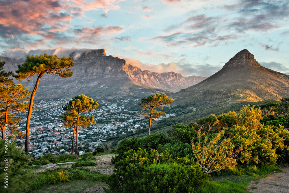 Fototapeta Panorama of Cape Town and Table mountain, view from Signal Hill, South Africa