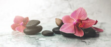 Alternative Therapy. Orchid Flowers With Black Stones On Marble Background. Banner