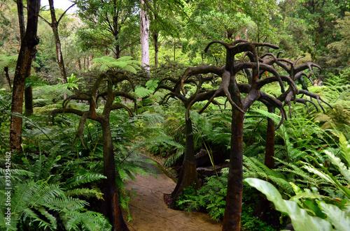 Snakeskin trees in the Singapore botanic garden Fotobehang