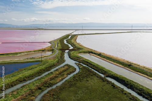 Fotomural Multi Colored Water in Ponds and Stream in Salt Marsh in SF Bay Aerial