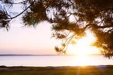 Beautiful Landscape Morning Su...
