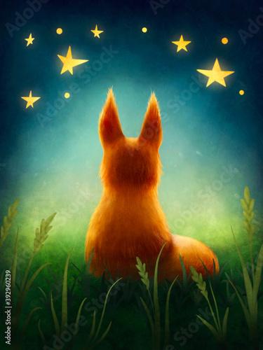 Fototapeta premium Little cute red fox