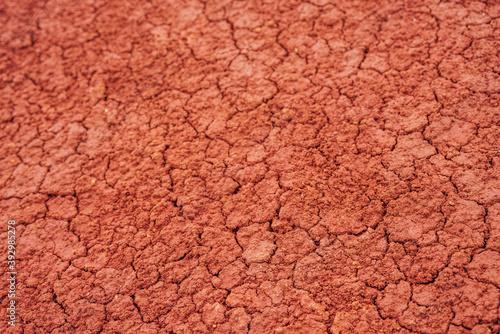 Valokuvatapetti Nature background of cracked dry lands