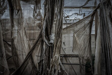 Abandoned Greenhouse Structure Where Torn Fabrics Are Seen