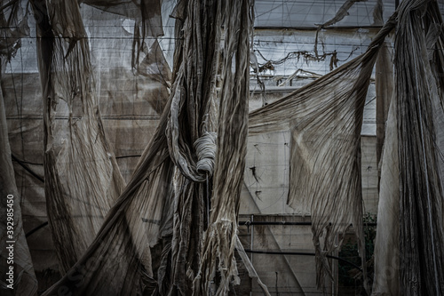 abandoned greenhouse structure where torn fabrics are seen Tapéta, Fotótapéta