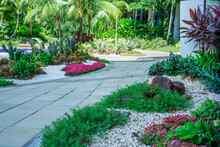 Gravel Garden, Decorated With White Shell, Brown Stone, Colorful Ground Cover Plant