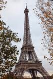 Eiffel tower with autumn leafs, Paris, France.