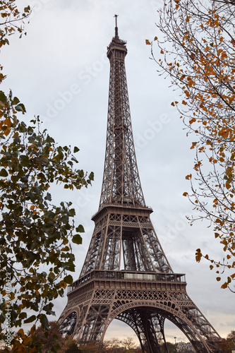 Eiffel tower with autumn leafs, Paris, France.
