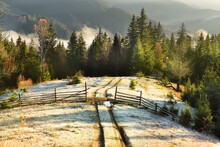 An Early Frosty Late Autumn M...