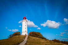 Lighthouse Thornbush At The Island Of Hiddensee, German Baltic Sea