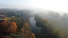 Beautiful Cinematic Aerial Of Autumn Trees By Quiet River During Foggy Morning. Moody Mist Appears Like Impressionistic Painting. Colorful Fall Foliage.