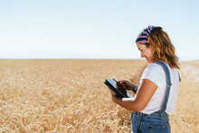 Side View Of Positive Focused Female Farmer In Overalls Standing In Wheat Field In Countryside And Browsing Tablet