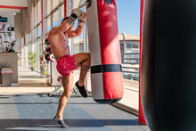Side View Of Strong Male Boxer With Naked Torso And In Gloves Training Kick On Punching Bag In Bright Gym