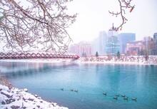 Snowfall Around The Peace Bridge