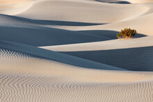 View Of Mesquite Flat Sand Dunes During Sunset
