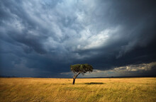 Scenic View Of Storm Clouds Ov...