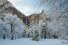View Of Bridalveil Fall And Fr...